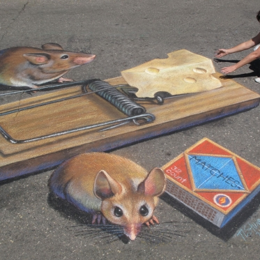 Who Gets the Cheese 3D Chalk Art By Tracy Lee Stum